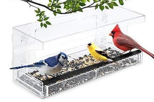 Garden Point Comedero para Pájaros para Ventana...