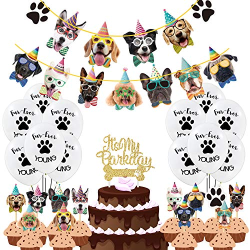 Duufin 50 Piezas Pancartas de Cumpleaños de Perro...